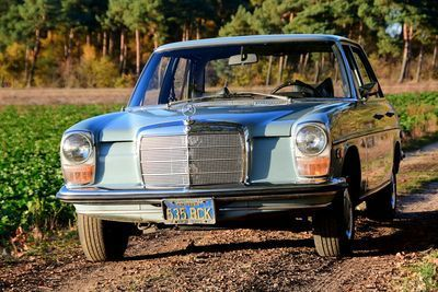 220 Sedan Strich 8